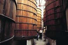 Bundaberg Rum-Brennerei