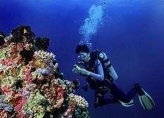 Cairns tauchen am Riff