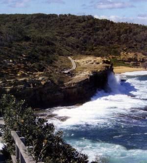 brisbane water national park pdf
