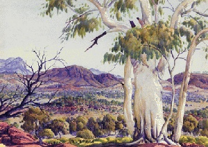 Landscape with Ghost Gum