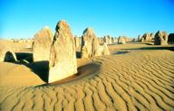 Die Pinnacles machten den Nambung Nationalpark bekannt